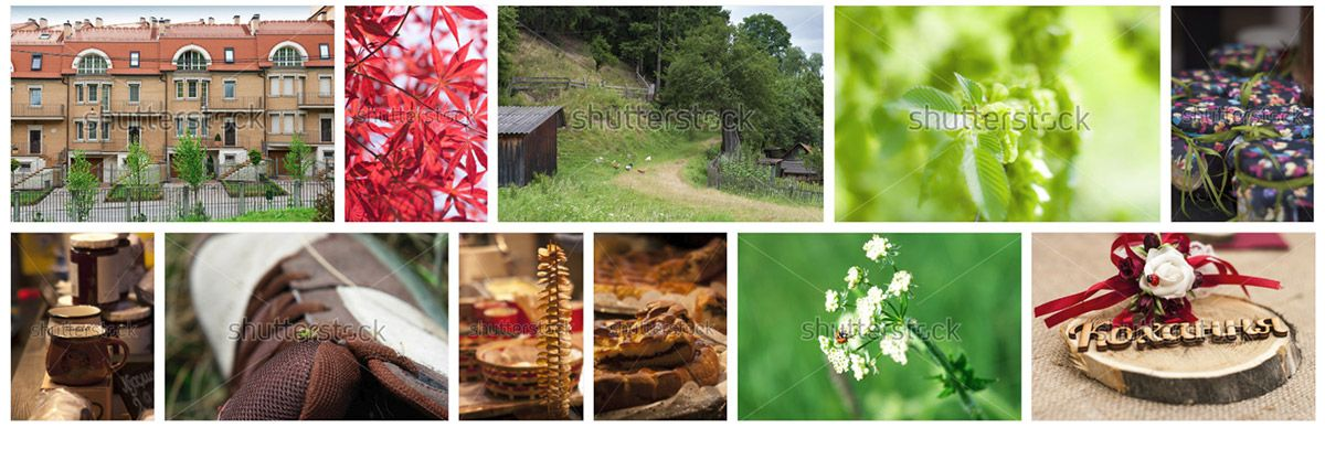images at shutterstock